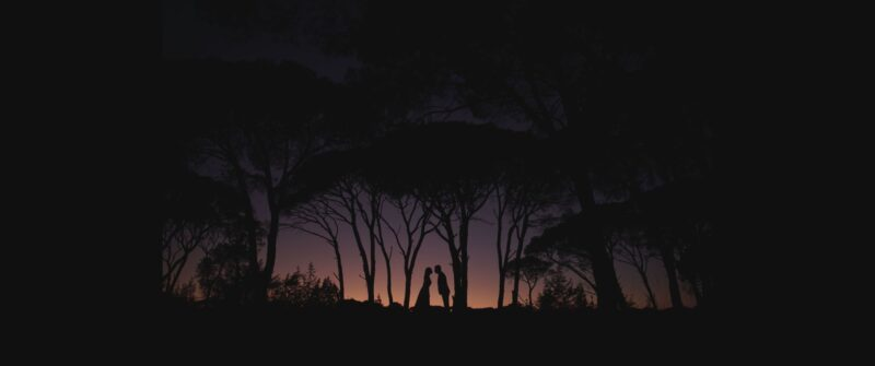A beautiful silhouette at Strofilia forest. A chic wedding photoshoot the day after | whitefilming